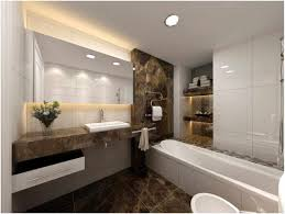 bathroom design handicap accessible bathrooms popular home design