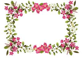 free flower clipart borders clipartxtras