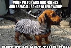 Memes Animals - 27 funny animal memes 4 is hilariously inappropriate
