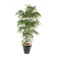 plante verte bureau plantes de bureau number diy plantes en papier moukita