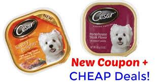 food coupons cesar dog food coupon and deals