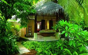 exotic houses pictures house pictures