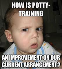 Training Meme - baby how is potty training funny meme image