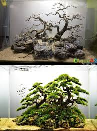 Planted Aquarium Aquascaping 930 Best Aquarium Fish Tank Aquascape Aquascaping Images On