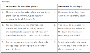 Describe A Reflex Action Ncert Solutions For Class 10th Science Chapter 7 Control And