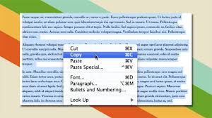 how to copy cut and paste for beginners