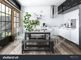 bright kitchen white black minimalist interior stock illustration