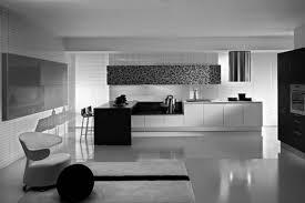 Kitchen Cabinets California by Kitchen Cabinets Winning Contemporary Kitchen Cabinets California