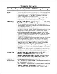 example information technology professional resume sample resume
