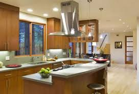 Island Kitchen Hoods The Main Types Of Kitchen Hoods Photo Gallery And Description