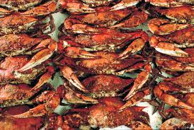 waterman u0027s crab house