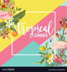 fruits flowers tropical fruits flowers and flamingo birds banner vector image