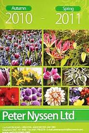 leaf through the best bulb catalogues we put six to the test