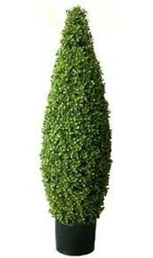 topiary trees artificial topiary trees hedge topiary 4 boxwood tower