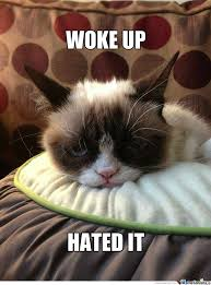 Morning People Meme - list of synonyms and antonyms of the word grumpy morning