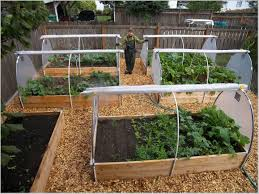 home vegetable garden raised bed home outdoor decoration
