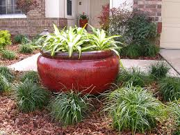 florida landscaping plants plants shrubs and trees used by