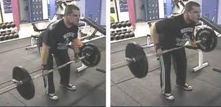 Bench Barbell Row Back Workout