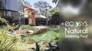 Natural Swimming Pool Natural Swimming Pool Youtube