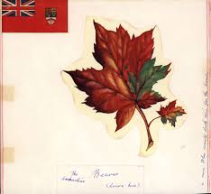 national flag of canada day a look at the forgotten runners up to