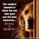 Image result for the sad thing is when the one who gave you the best memories dog quotes
