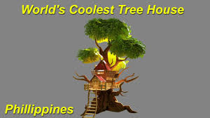 world u0027s coolest tree house youtube