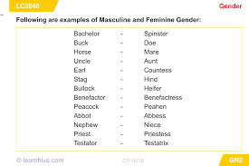 learnhive cbse grade 7 english genders lessons exercises and