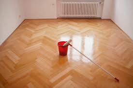 Diy Laminate Floor Cleaner by Best Laminate Floor Cleaner For Pets Carpet Vidalondon