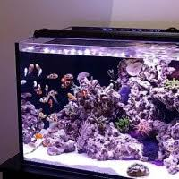 current usa orbit marine aquarium led light orbit marine fixtures current usa