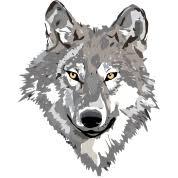 gray wolf design t shirt spreadshirt