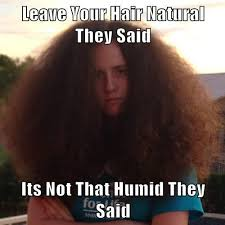 Natural Hair Meme - leave your hair natural they said its not that humid they said