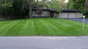lawn maintenance service landscaping maintenance total lawn