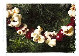 Outdoor Tree Ornaments by Popcorn U0026 Cranberry Garland Holidays Pinterest Popcorn