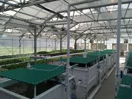Farm Accounting Spreadsheet Aquaponic Farming Training The Aquaponic Source