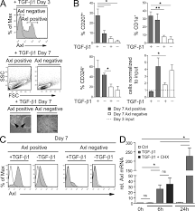 salk institute floor plan identification of axl as a downstream effector of tgf β1 during