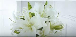 sympathy flowers sympathy flowers creative expressions marlette mi