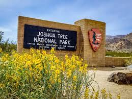 Joshua Tree Map Joshua Tree National Park U2014 Joshua Tree Visitors Guide