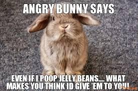 angry bunny says funny meme