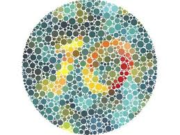 Can A Woman Be Color Blind Best 25 Color Blindness Test Ideas On Pinterest Diy Newspaper
