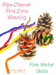 nature inspired craft pine cone weaving