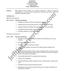 Professional It Resume Template Professional Sales Resume Template Resume Template And