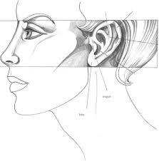 the eyes fashion design joshua nava arts