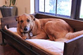making a rustic industrial dog bed laura makes
