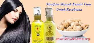 membuat minyak kemiri untuk rambut botak manfaat minyak kemiri fora untuk kesehatan 0853 2010 5050 jual