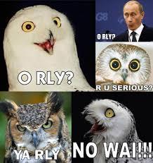O Really Meme - owl memes gallery ebaum s world