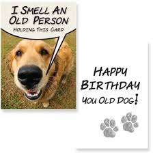 funny dog birthday cards card invitation samples enchanting funny