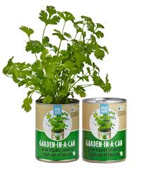 Garden For Family Of 4 Amazon Com Back To The Roots Garden In A Can Organic Basil
