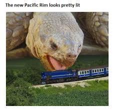 Tortoise Meme - memebase tortoise all your memes in our base funny memes