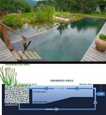 Louisiana wild swimming images Ecological swimming pool la team the inner workings of an eco pond jpg