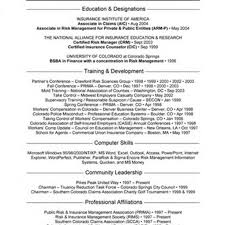 Example Resume For Cashier by The Best Insurance Agent Job Description Sample Recentresumes Com